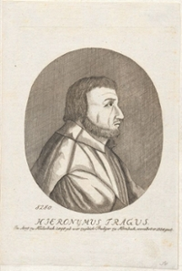 Hieronymus Bock (1498-1554)